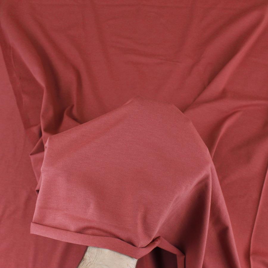 Jersey de coton bio - rouge terre